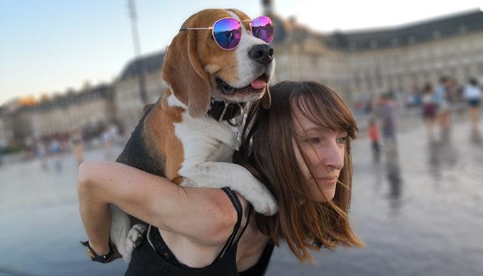 Cat_&_Marvel-ze-Super-Beagle