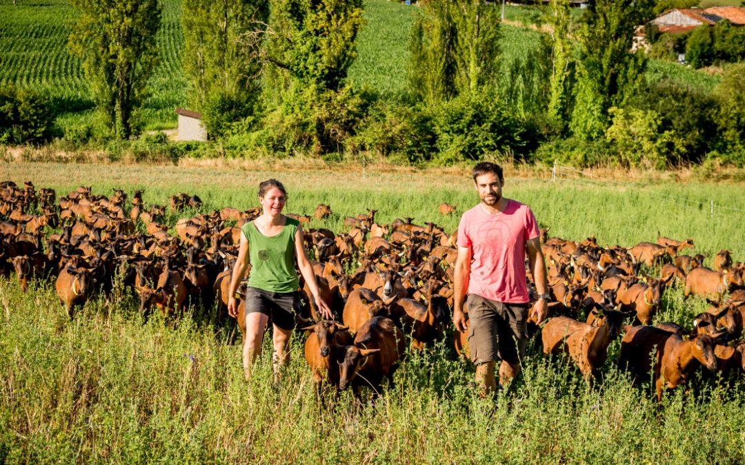 Le Brilac repositionne sa communication pour séduire les éleveurs caprins de demain